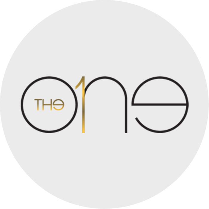 programa-the-one